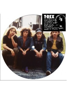 Get It On   ( alt Version )  / Rip Off (Alt version) Double A Side       Pic disc